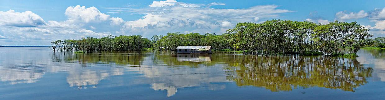 amazonie manaus Brésil voyage