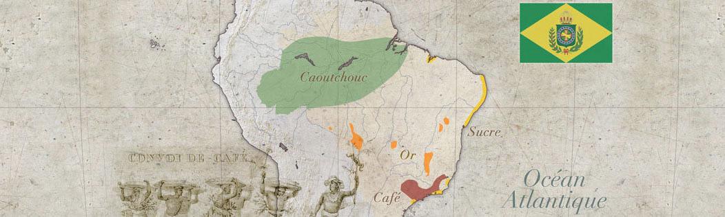 carte information brésil voyage