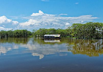 Amazonie Brésil voyage