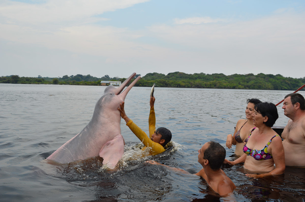 Boto Amazonie Brésil voyage